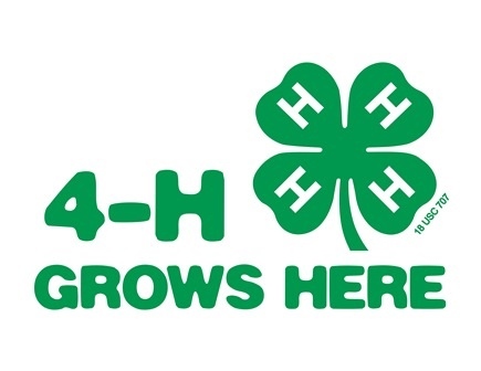 4H grows here logo