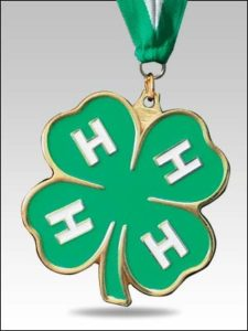 Cover photo for 4-H Awards Applications