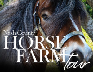 Cover photo for Horse Farm Tour - Fri, Sept 27th
