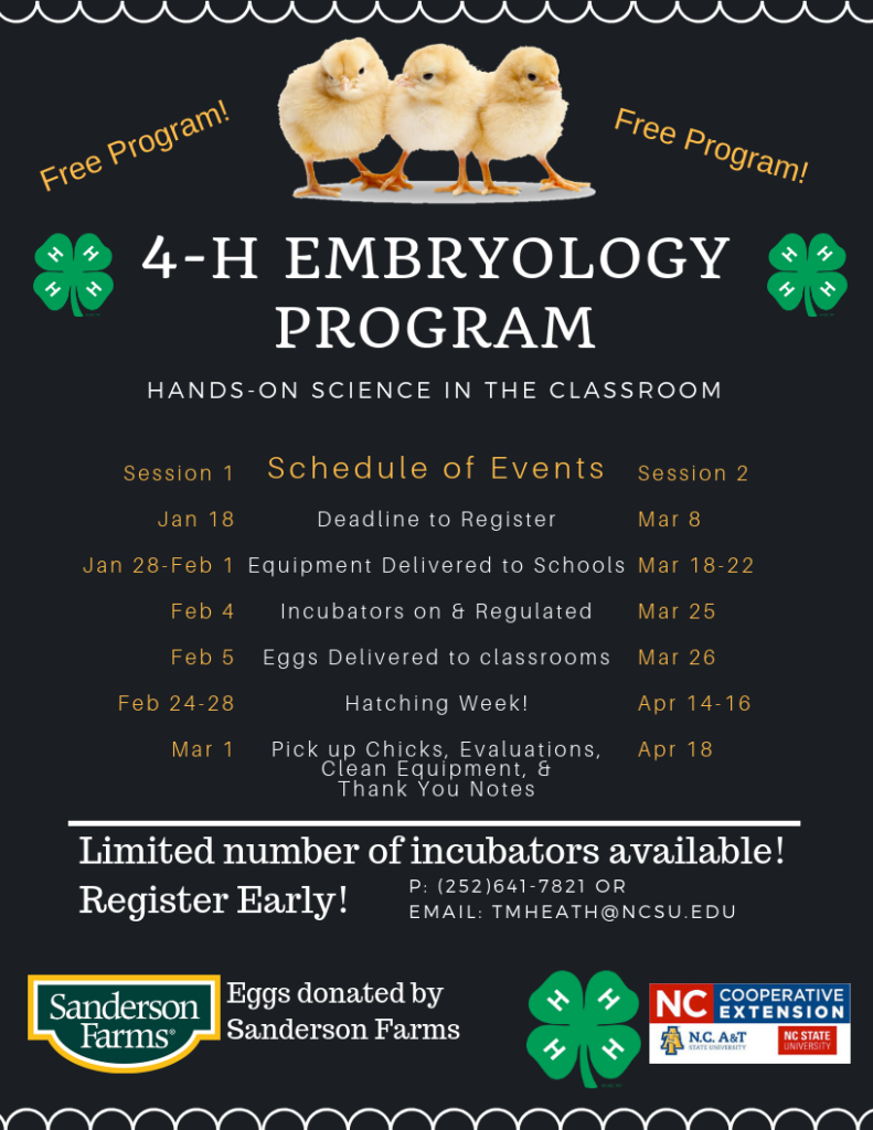 4-H Embryology flyer page 2 image