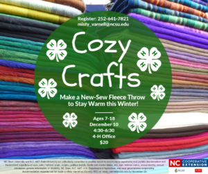 Cover photo for 4-H Cozy Crafts
