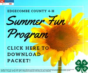 Summer Fun flyer image