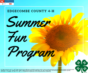 Cover photo for 2019 4-H Summer Fun