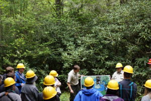 Cover photo for NC State Extension Forestry Lunch and Learn Series
