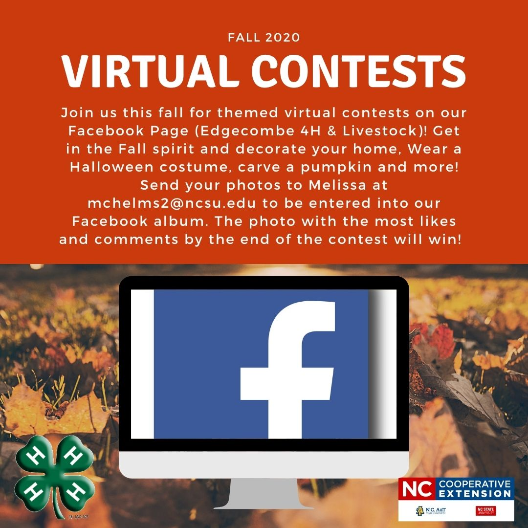 Virtual Competitions