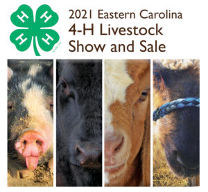 Cover photo for Livestock Show and Sale Winners