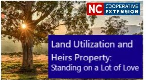 Cover photo for Land Utilization and Heirs Property: Standing on a Lot of Love